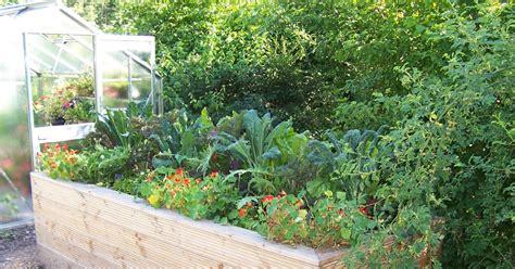 Garten Hochbeet Pflanzen by Hochbeet Garten Pflanzen Natur Hochbeet Garten Und