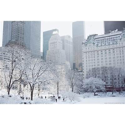 A Winter Wonderland in Central ParkNew York USA 2014