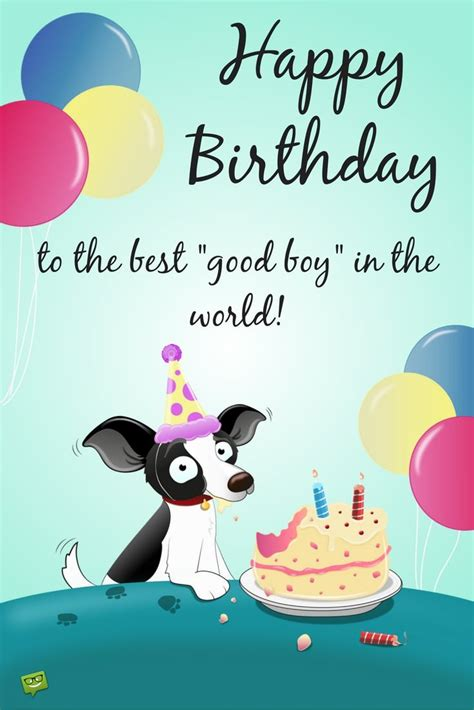 Happy Gravitation 2 Who S The Baby Boy You Ask Touching Wishes For Your S Or Cat S Birthday