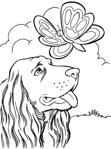 Domme Hond Kleurplaat by Honden Kleurplaat Kleurplaten Kleurplaten
