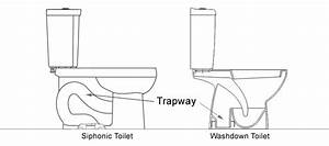 Siphonic Vs Washdown Toilet  Which Is Better
