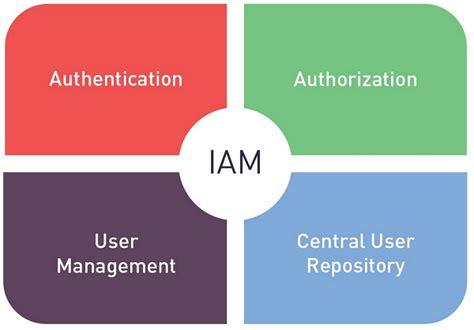 identity  access management concept dragon
