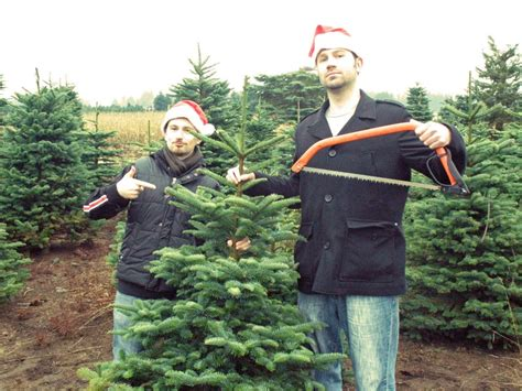 cut down a christmas tree in thurston county thurstontalk