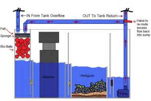 fresh icf building plans keeping n z local marine fish tank set up