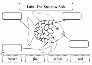 4817854250 ea6cd37ce5 zjpg With fish diagram