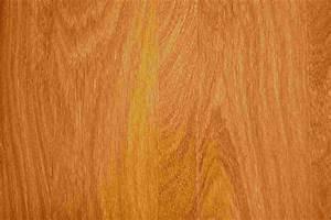 Vinyl Vs Laminat : engineered hardwood vs laminate wood flooring wood floors t molding for laminate flooring ~ Watch28wear.com Haus und Dekorationen
