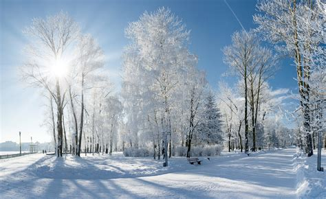 Free Winter Picture by Living On Earth Sounds Of Winter