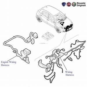 Fiat Punto 1 3 Mjd Diesel  Engine Wiring  U0026 Front Wiring Harness