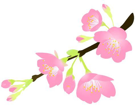 無料イラスト桜 に対する画像結果