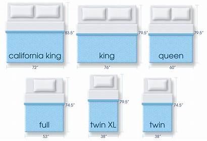 Mattress Queen Sizes Dimensions King Serta Standard