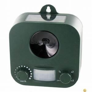 Repulsif Chat Exterieur Jardiland : stopcatdog solaire ultrason anti chat chien fouine lapins ~ Melissatoandfro.com Idées de Décoration