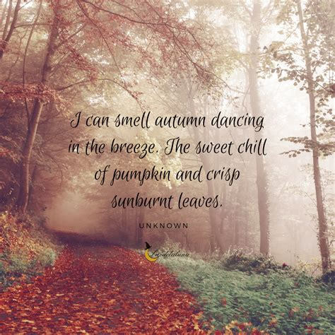 beautiful autumn quotes     fall  love