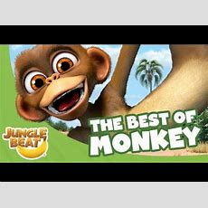 The Best Of Monkey  Jungle Beat Compilation [full