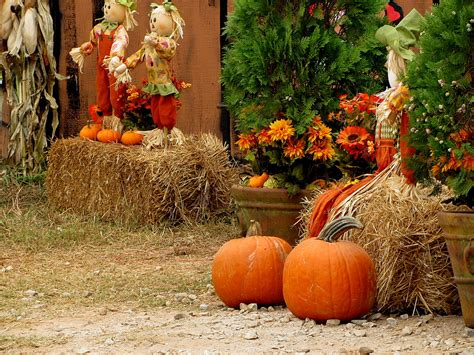 pumpkins and fall pictures fall scene wallpaper with pumpkins wallpapersafari