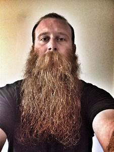 15 Best Long Beards Images On Pinterest