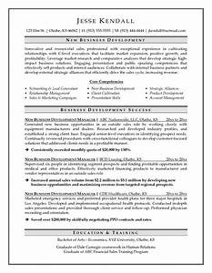 Business sales manager resume