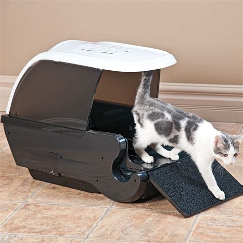 Why Do Cats Meow At Humans Automatic Cat Litter Box