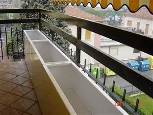 Beautiful Siepe Per Terrazzo Contemporary - Home Design Inspiration ...
