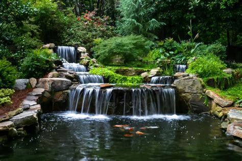 koi pond with waterfall animate your landscape with waterfalls koi ponds aquatic