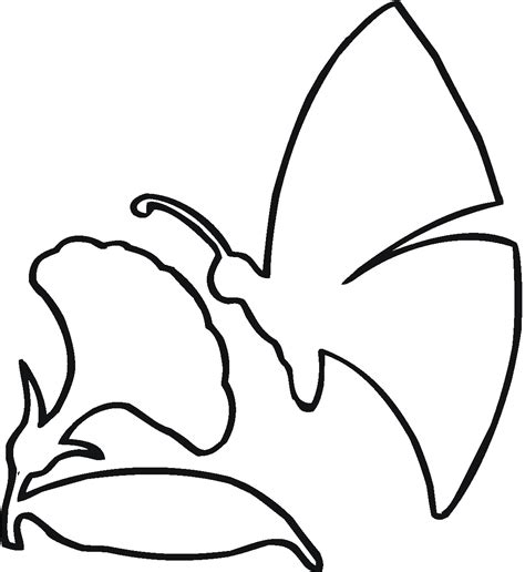 butterfly  flower outline coloring page flowers