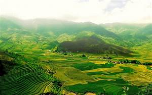 The, Green, Fields, Wallpapers, Hd, Desktop, And, Mobile