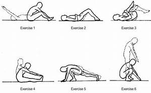 Image Gallery Lordosis Exercises