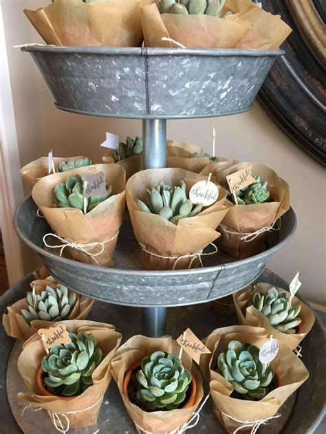 decorations for a baby shower succulent cactus ideas for a baby shower or