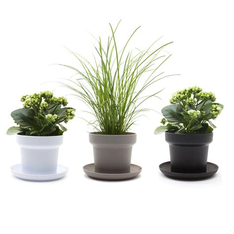 Plant Pots by The Green Plant Pot By Authentics