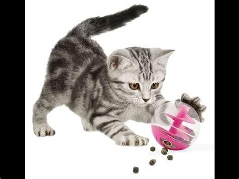tuto 4 fabriquer un jouet pour chat