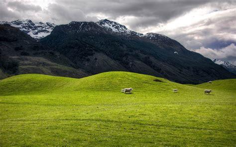 hills  mountains  zealand landscape wallpaper