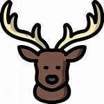 Deer Icon Icons Flaticon
