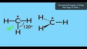 Methyl Radical Organic Chemistry