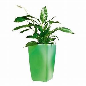 Pot Fleur Lumineux : pot de fleur exterieur topiwall ~ Nature-et-papiers.com Idées de Décoration