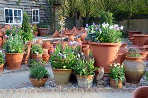 Patio Plant Stand Uk by Handmade Terracotta Flowerpots From Whichford Pottery