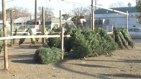 sacramento christmas tree lots close for the season fox40