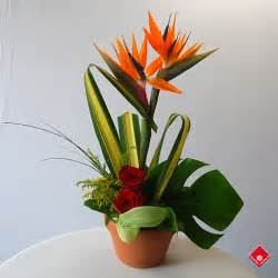 simple wedding bouquets bird of paradise in a tropical flower arrangement the