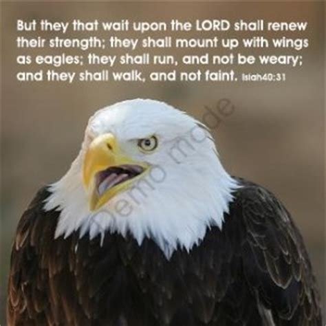 eagle scout quotes funny quotesgram