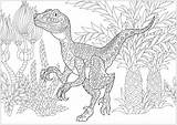 Dinosaur Coloring Velociraptor Dinosaurs Adult Adults Doodle Zentangle Colouring Printable Justcolor Sheets sketch template