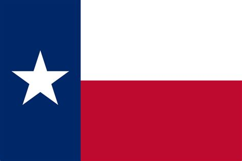 texas state information symbols capital constitution