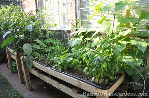 container vegetable garden ideas for growing vegetables in small spaces and yards j n roofing maintenance llc