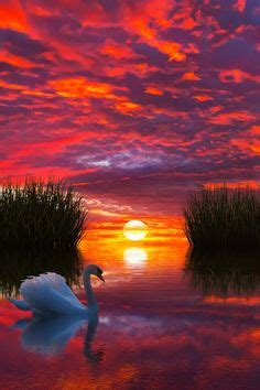 sunset  sunrise images sunrise scenery