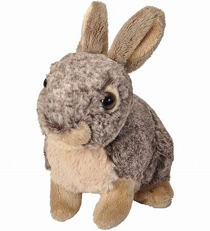 Cottontail Rabbit Cuddlekins Bunny Nuttall Stuffed Wild