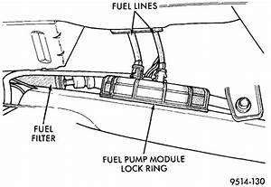 Palomino Pinto Wiring Diagram