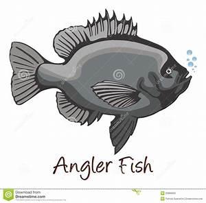 Anglerfish, Color Illustration Stock Photography - Image ...