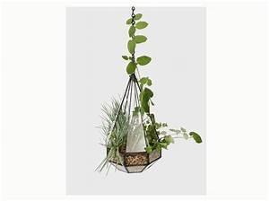 Terrarium Plante Deco : terrariums d couvrez ces mini serres ultra d co elle ~ Dode.kayakingforconservation.com Idées de Décoration