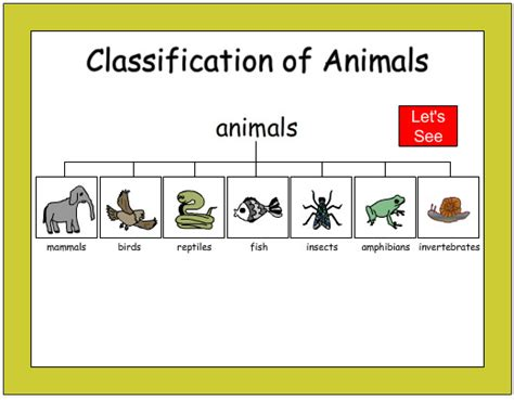 Classifying Animals Worksheet For Kindergarten  Animal Worksheets Games Quizzes For Kids