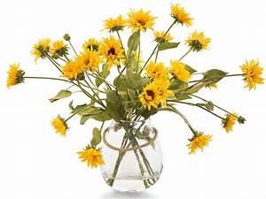 Bouquet De Printemps : fleurs bouquets fleurs printemps decos fleurs scrapbooking ~ Melissatoandfro.com Idées de Décoration