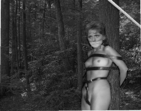 Dawn Wells Nude Fakes Gallery 3864 My Hotz Pic