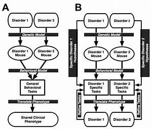 Applying The Attribute Model To Develop Behavioral Tasks