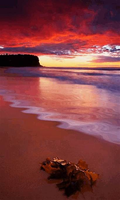 Sunset Sunrise Animated Amazing Evening Nature Wallpapers